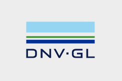 dnv.png#asset:238