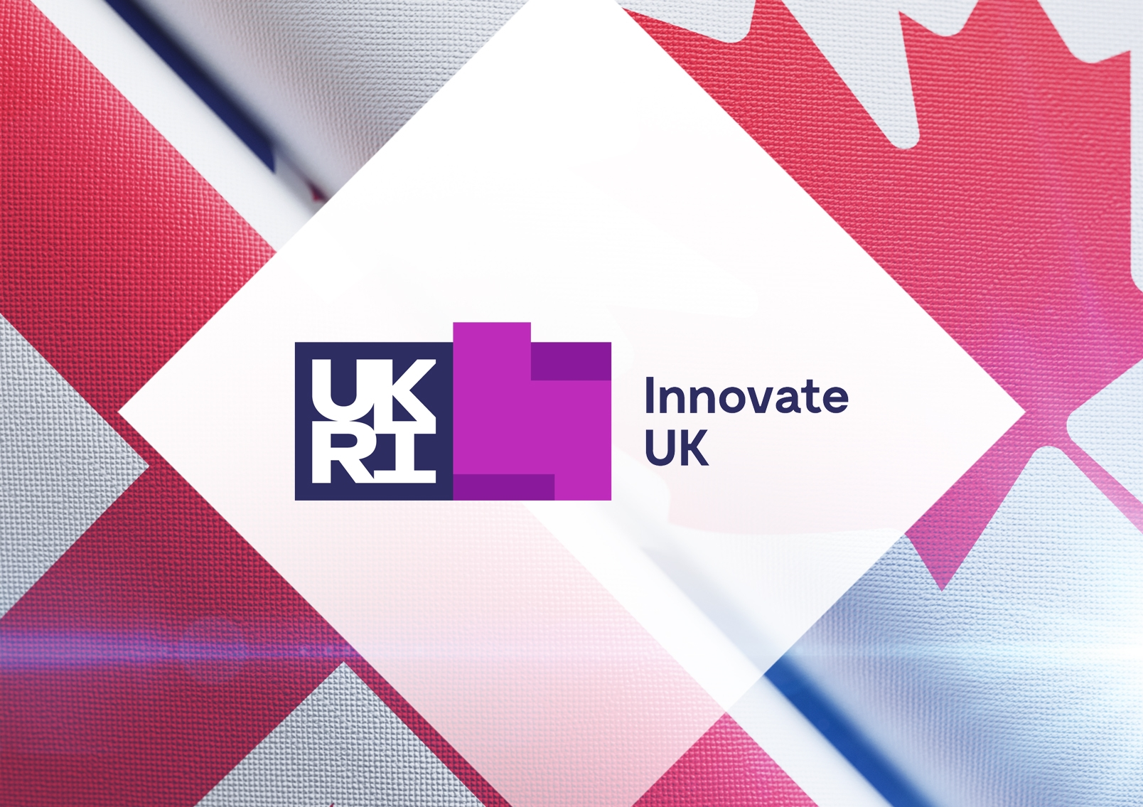 Innovo secures place on Innovate UK's Global Business Innovation Programme